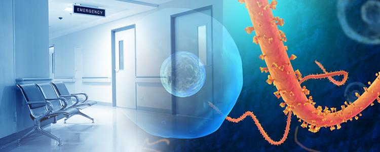ebola-graphic