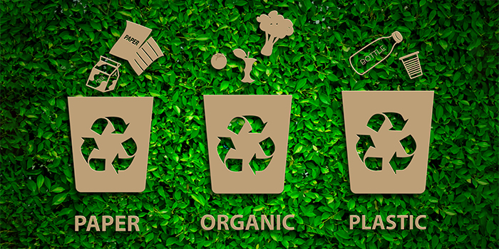 Paper-Organic-Plastic-Recycling-Concept_443477749_700x350