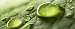 Q2-green-handsoap