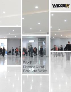 diamond-guard-brochure.png